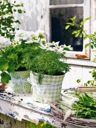 декорации за градина