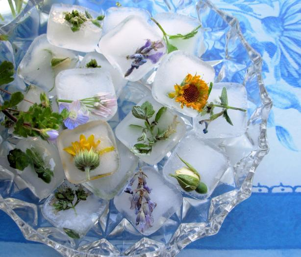 Свежи кубчета лед