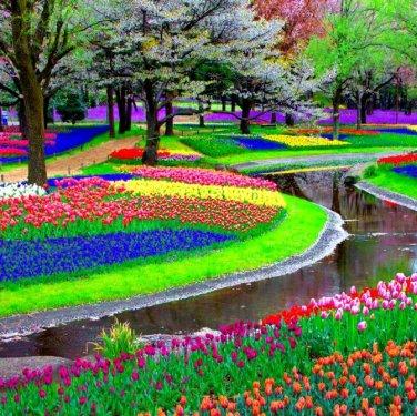 Най-голямата цветна градина в света