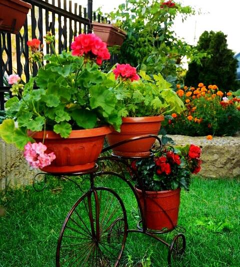 Идея за аранжиране на градината