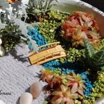миниатюрна градина (11)