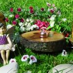 миниатюрна градина (13)