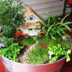 миниатюрна градина (15)