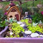 миниатюрна градина (7)