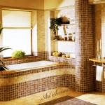 мозайка в банята (1)