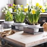 пролетни декорации и украса за дома (6)
