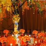 сватбени декорации (3)