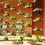 Висяща градина от пластмасови бутилки