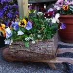 Цветна градинка в дънер