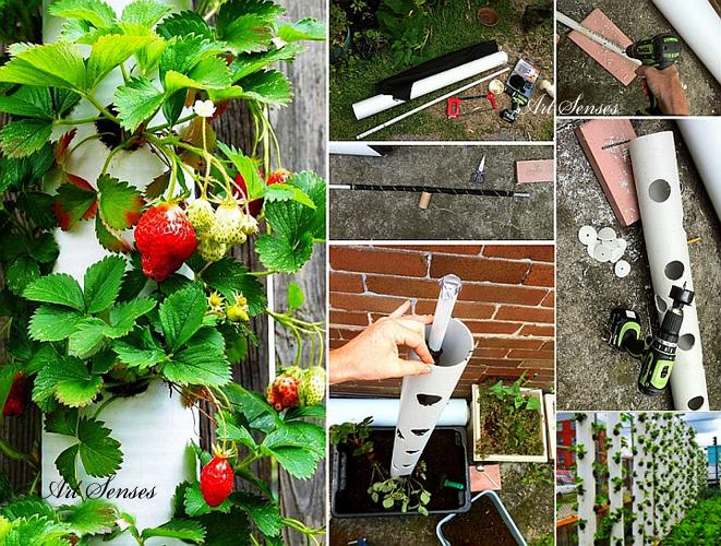 Вертикална ягодова градина