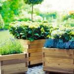 Дървени сандъчета за цветя