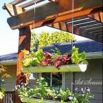 Идея за вертикална градина