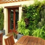 Впечатляващи вертикални градини (13)