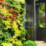 Впечатляващи вертикални градини (14)