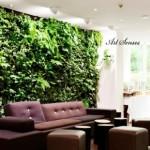 Впечатляващи вертикални градини (16)