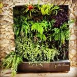 Впечатляващи вертикални градини (5)