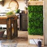 билкова градина в кухнята1