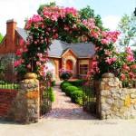 цветни арки в градината (8)