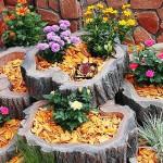 Идеи за красиво оформена градина