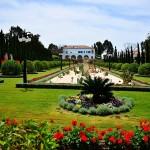 Бахайските градини (10)