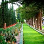 Бахайските градини (12)