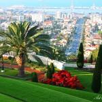 Бахайските градини (14)