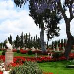 Бахайските градини (15)