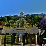 Бахайските градини (7)