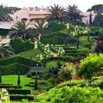 Бахайските градини (9)