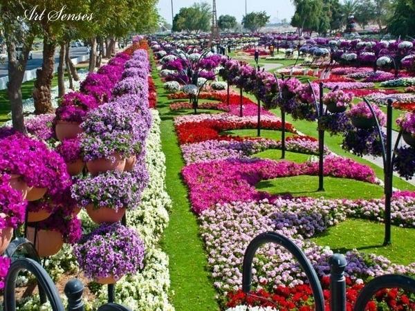 Райските градини на Ал Аин
