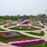 Райските градини на Ал Аин1 (1)