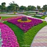 Райските градини на Ал Аин1 (12)