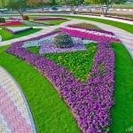 Райските градини на Ал Аин1 (14)