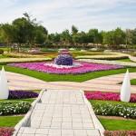 Райските градини на Ал Аин1 (15)