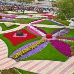 Райските градини на Ал Аин1 (3)