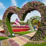 Райските градини на Ал Аин1 (4)