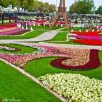 Райските градини на Ал Аин1 (9)