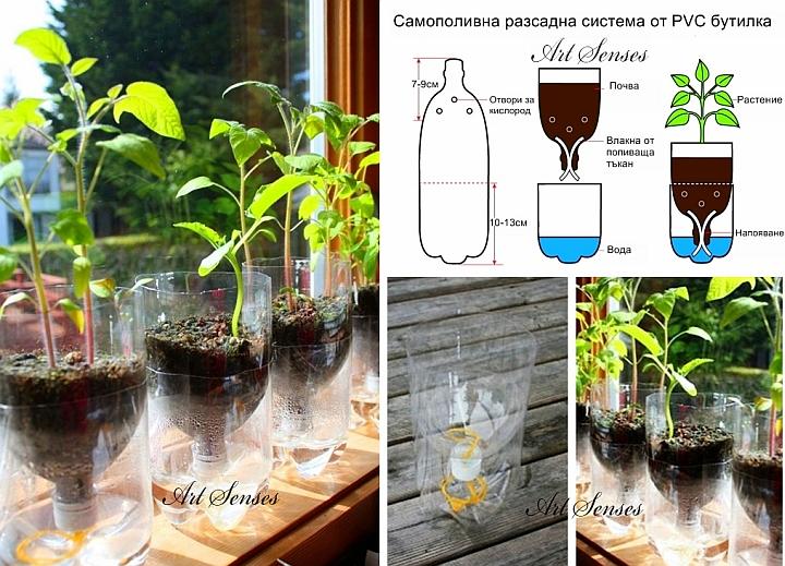 Самополивна разсадна система от пластмасова бутилка