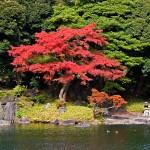 Великите японски градини - Кораку-ен