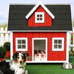 Оригинални къщички за кучета