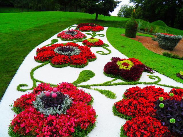 Цветя, аранжирани като цветя