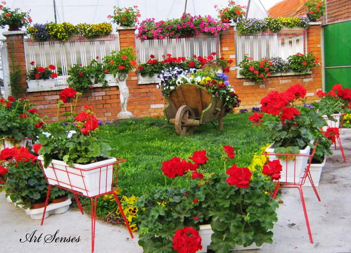 Украса и декорации в градината