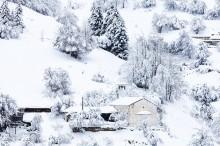 село Гела в Родопите (4)