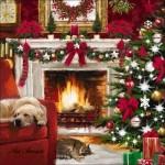Магията на Коледа (11)