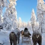 Русия - далечна и непозната (14)
