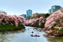Пролет в Япония (1)
