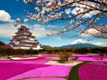 Пролет в Япония (10)
