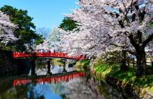 Пролет в Япония (11)