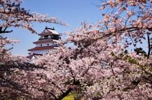 Пролет в Япония (3)