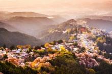 Пролет в Япония (4)